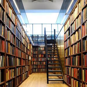 Библиотеки Нижнего Часучея