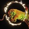 Цирки в Нижнем Часучее